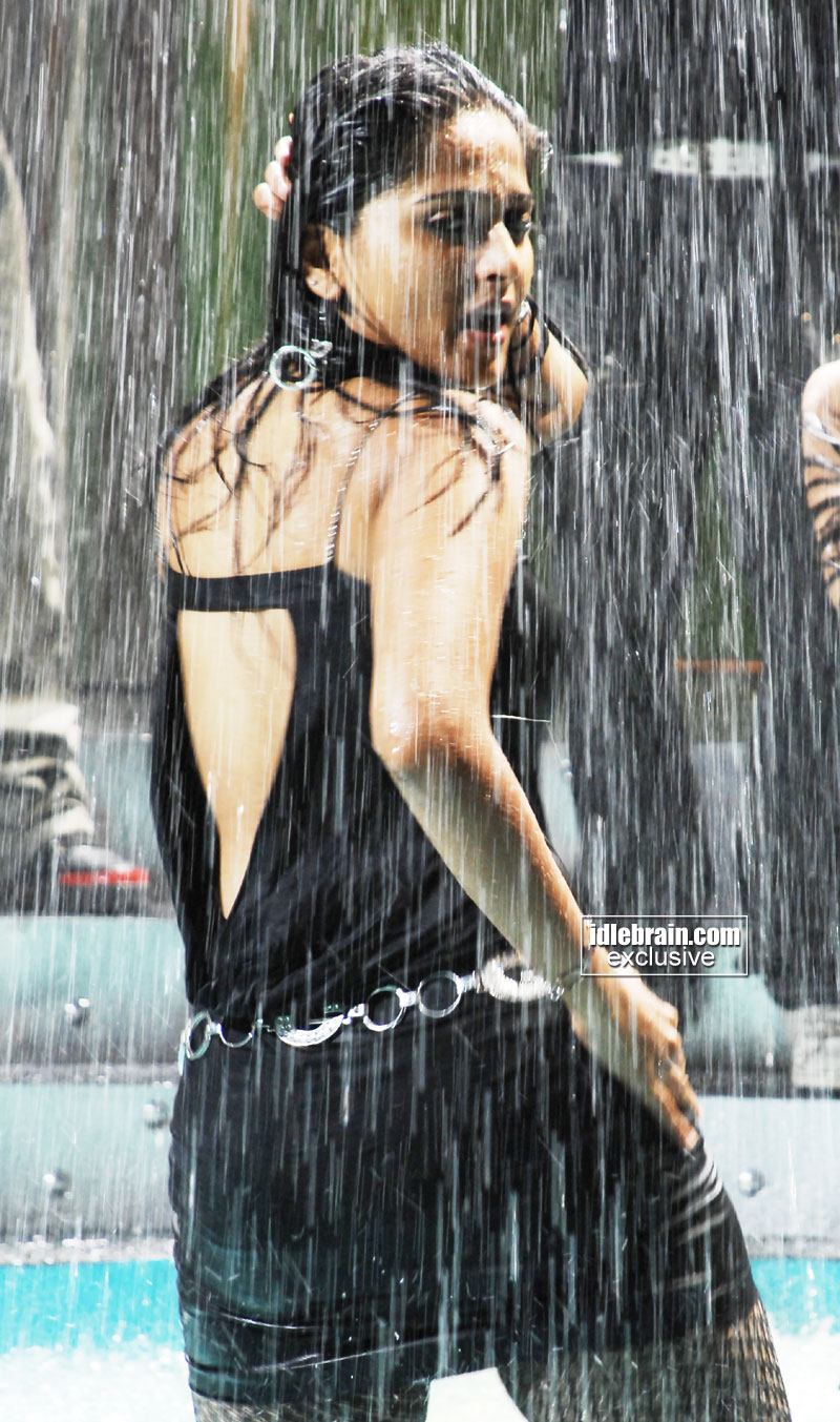 http://idlebrain.com/movie/photogallery/anushka32/images/anushka3.jpg
